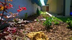 Jedna malá trnavská záhradka ;)