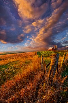 Phil Koch: Artist Website