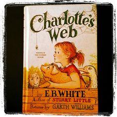 Charlotte's web!