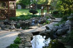 Backyard paradise in Downers Grove,IL