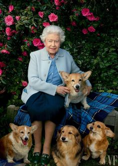 Queen Elizabeth Covers 'Vanity Fair' with Her Beloved Dogs!: Photo Queen Elizabeth II poses for the cover of Vanity Fair's latest issue, surrounded by her beloved Corgis and Dorgis! The royal was photographed by… Annie Leibovitz, Prinz Philip, Gato Animal, Reine Victoria, Queen 90th Birthday, Happy Birthday, Die Queen, Vanity Fair Magazine, Her Majesty The Queen