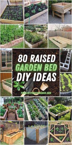 Cheap Raised Garden Beds, Metal Garden Beds, Elevated Garden Beds, Building A Raised Garden, Easy Garden, Building Garden Boxes, Raised Flower Beds, Raised Beds, Garden Bed Layout