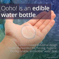 72702b597a 29 Best Edible Water Bottle images | Edible water bottle, Plastic ...