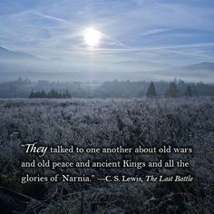 As night falls on Narnia forever, old friends remember. - The Last Battle Book Tv, Book Nerd, Book Series, Cs Lewis Narnia, Narnia Movies, Last Battle, Chronicles Of Narnia, Book Quotes, Aslan Quotes
