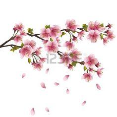 Sakura bloesem roze - Japanse kersenboom met vlag en bloemblaadjes geïsoleerd…