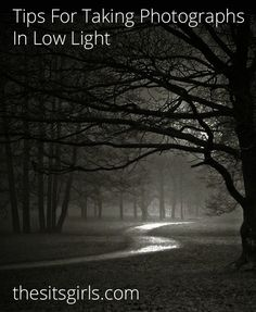 Low Light Photography Tips   Great tips for shooting pictures in dark places.