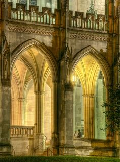 Nighttime at the National Cathedral in Washington D.C.
