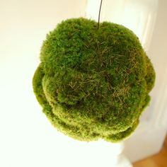 Green Decorative Balls How To Make Moss Covered Balls  Craft Crafty And Gardens