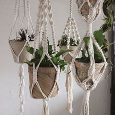 Perfect for hanging potted plants, each cotton macramé hanger is handmade, offering its own unique qualities. For a different look hang glass vases or even baskets. A simple way to add green to any in
