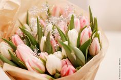 Pretty Tulips by Paris in Four Months, via Flickr