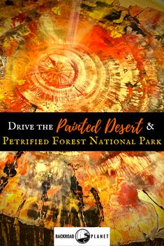 Experience a virtual drive through the Painted Desert & Petrified Forest National Park, and then use Backroad Planet's guide to plan a road trip of your own. National Park Passport, Us National Parks, Arizona Road Trip, Road Trip Usa, Usa Travel Guide, Travel Usa, Travel Tips, Beach Travel, Travel Guides