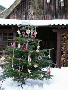 Stromeček na obrázku je jen koupený ve stojanu, já preferuji si ozdobit živý stromek na zahradě, toto je trochu plýtvání. Každopádně se mi ale líbí použité ozdoby - stuhy, kolečka a hvězdičky.