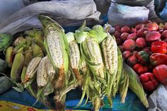 Choclo – ears of corn with huge kernels – at the San Pedro Market in Cusco, Peru