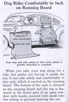 "This is for Real!!!!!!""Comfortable, safe dog sack"" invention, 1936 (via Modern Mechanix)"