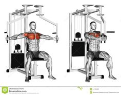 Photo about Reduction of arms simulator butterfly. Exercising for bodybuilding. Target muscles are marked in red. Initial and final steps. Illustration of workout, simulator, butterfly - 64765684