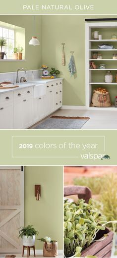"""""""This optimistic green has a heart of linen, weaving us closely together. One of 12 Valspar 2019 Colors of the Year: Martinique Dawn at Lowe's. Valspar Paint Colors, Valspar, Farmhouse Paint Colors, Paint Colors For Home, Kitchen Paint, Valspar Colors, Green Bathroom, Kitchen Paint Colors, Valspar Bedroom"""