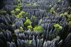 Reserva Natural Tsingy (Madagascar): El bosque de piedra.