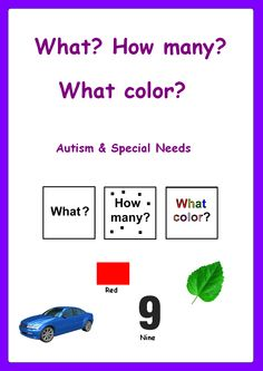 WHAT? HOW MANY? WHAT COLOR? Autism & Special Needs Activity