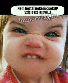 Hinny a mindönit! Funny Photos, Haha, Jokes, Have Fun, Drink, Bedroom, Schmuck, Fanny Pics, Beverage