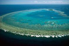 Großen Barriere-Riff