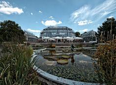 Botanischer Garten Berlin von Foto-Monika