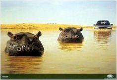 El anuncio dice que ese coche puede circular hasta por el agua cómo los hipopótamos.