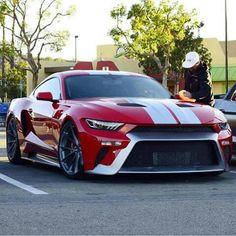 Mistang GTT:Half Mustang half Ford GT