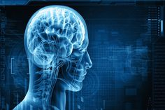 Head Injury cause immune system to damage brain http://www.bangalorewishesh.com/life-style/490-health-tips/36650-head-injury-cause-immune-system-to-damage-brain.html  A new study reveals that stopping the body's immune system from killing brain cells and it can prevent the brain damage caused by head injuries.
