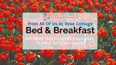 Clare Ireland, County Clare, Rose Cottage, Bed And Breakfast, Nice View, Tours, News