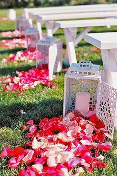 wedding aisle decoration  Find your rose petals on my Etsy shop  https://www.etsy.com/shop/FarmGirlRosePetals