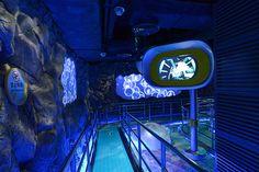 AV System Integration for Dark Ride Attraction 'Deep Sea Odyssey' @ Chimelong Ocean Kingdom, Zhuhai (China) // www.at Lighting Control System, Digital Projection, Audio System, Deep Sea, Underwater, Ocean, Neon Signs, Dark, Travel