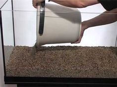 Step by step: how to set up an fish tank Aquarium, planted tanks - YouTube