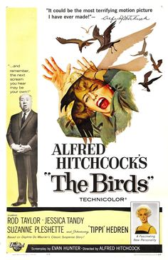 As beautiful blonde Melanie Daniels (Tippi Hedren) arrives in Bodega Bay in pursuit of eligible bachelor Mitch Brenner (Rod Taylor), she is inexplicably attacked by a seagull. Suddenly thousands of birds are flocking into town, preying on schoolchildren and residents in a terrifying series of attacks. Soon Mitch and Melanie are fighting for their lives against a deadly force that can't be explained and can't be stopped in one of Alfred Hitchcock's masterpiece of nature gone berserk.