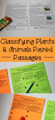 Classifying Plants and Animals Reading Comprehension great for teaching vertebrates, invertebrates, vascular and nonvascular plants. Could use in science or reading.