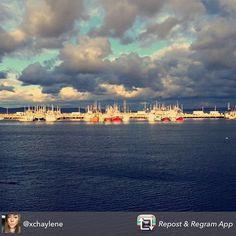 #digby sunsets make the best memories  #novascotia #visitnovascotia #eastcoast #travel #traveldeeper #explorecanada #canada  #igers #travel #instadaily #igtravel #instatravel #picoftheday #digbypines #bayoffundy #atlantic #ocean #igocean #igers #digby #digbyns #novascotiaeats