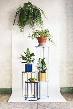 além dos suportes versáteis - que também podem servir como estantes ou mesinhas -, o estúdio cultiva plantas