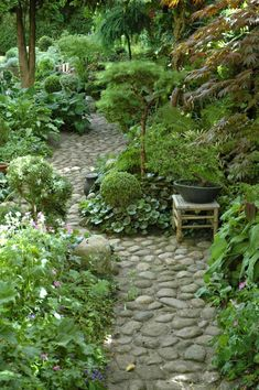Garden Paths … that only allows you to see 3 paths, but all 3 are good ideas … - Diy Garden Projects Diy Garden, Garden Cottage, Shade Garden, Dream Garden, Garden Paths, Cacti Garden, Garden Beds, Urban Garden Design, Woodland Garden