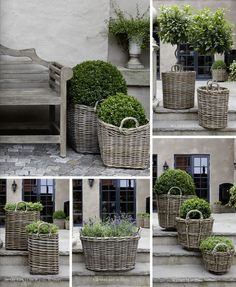 Collection of baskets with plants. Repinned by www.claudiadeyongdesigns.com  www.thegardenspot.co.uk