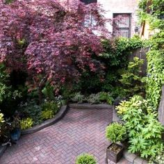 Garden Ideas For Small Backyards Townhouse Gardens By Robert Urban Backyard Spaces - Amys Office