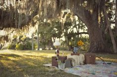 i want to have a picnic with my boyfriend under this weeping willow.