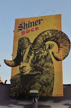 Shiner Ram
