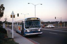 San Diego Transit Corp. 239   GMC FISHBOWL .