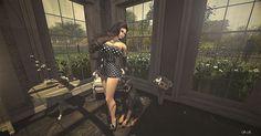 Style and Fashion S.K:  Lushish Poses -Sparkling Light(f)5m Lushish Poses...