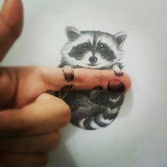 pencil-drawing-racoon1
