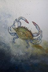 Gyotaku Framed Prints - Blue Crab Print Framed Print by Nancy Gorr