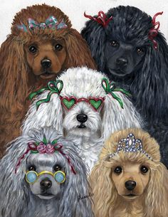 ❤opawz.com oodles of poodles