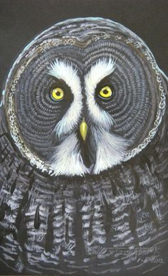 Gray Owl Who by HouseofChabrier