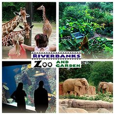 Riverbanks Zoo in Columbia, SC