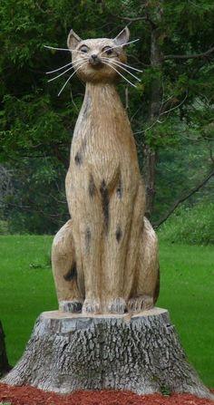 #ChatSculpté dans une souche -