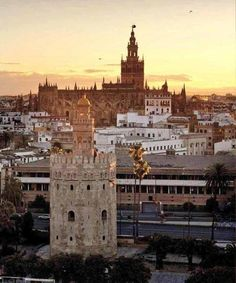 Torre del Oro (Tower of Gold, century), Cathedral and Giralda (bell tower of the Seville Cathedral) in Sevilla, Spain. Most Beautiful Cities, Wonderful Places, Places To Travel, Places To Visit, Sevilla Spain, Andalusia Spain, South Of Spain, Spain And Portugal, Seville
